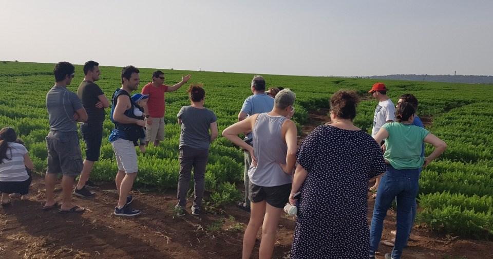 כפר הנופש מזרע - סיור חקלאי